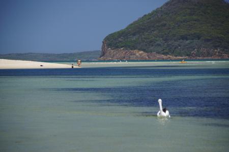 Wind Woppa Reserve